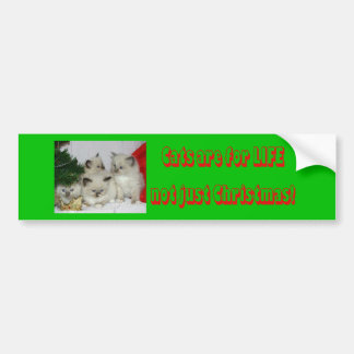 Gatos #1 del navidad pegatina de parachoque