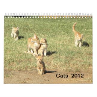 Gatos 2012 calendario de pared