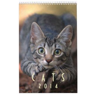 Gatos 2014 - Un calendario para los amantes del
