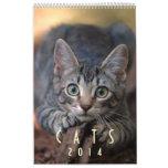 Gatos 2014 - Un calendario para los amantes del ga