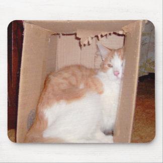 Gatos 31 Mousepad del maullido