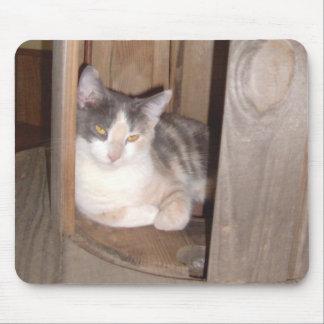 Gatos 33 Mousepad del maullido