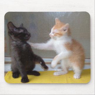 Gatos 34 Mousepad del maullido
