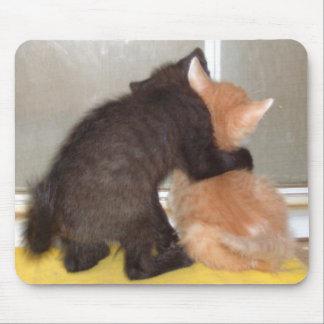 Gatos 40 Mousepad del maullido