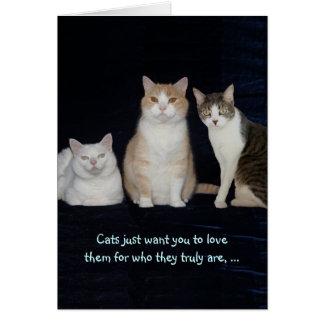 Gatos adaptables divertidos tarjeta de felicitación