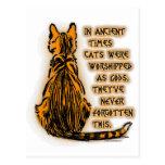 Gatos adorados como dioses tarjetas postales