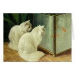 Gatos blancos que miran el Goldfish Tarjeta De Felicitación