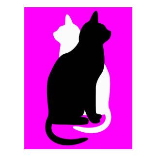 gatos blancos y negros del gatito del color de la  tarjetas postales