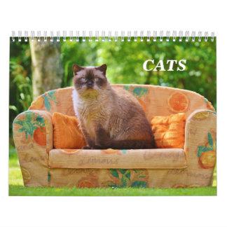 Gatos Calendarios De Pared