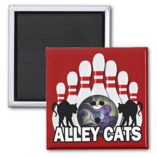 Gatos callejeros imán cuadrado