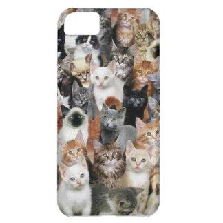 Gatos Carcasa iPhone 5C