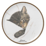 Gatos: Chessie: Cocina: Placa: Crema ligera Plato