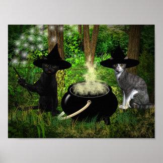 Gatos de conjuración póster