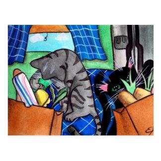 Gatos de la cocina tarjeta postal
