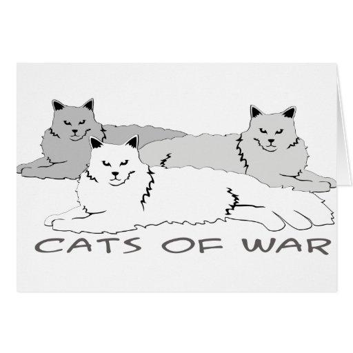 Gatos de la guerra tarjeton