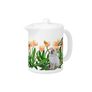 Gatos de la mariposa en tetera de los tulipanes