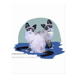 Gatos de la raqueta postal