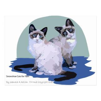 Gatos de la raqueta tarjetas postales