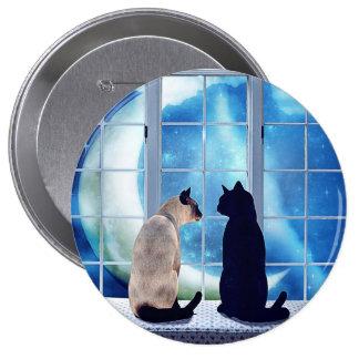 Gatos de la ventana pin