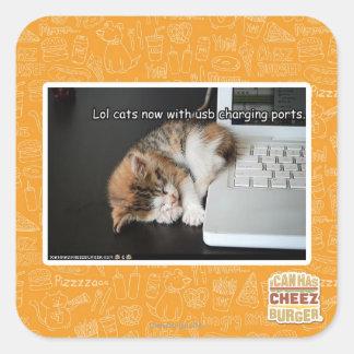 Gatos de Lol con USB Calcomanías Cuadradass Personalizadas