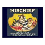 Gatos de los gatitos de la etiqueta de marca de la tarjeta postal