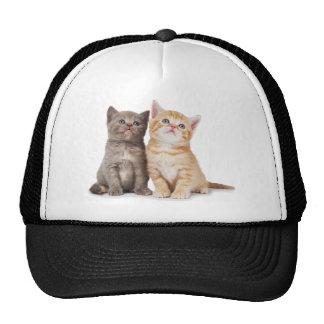 Gatos de los gatitos gorros bordados
