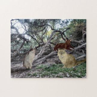 Gatos de selva puzzles