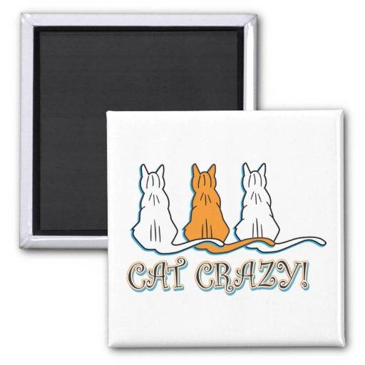 Gatos de Tabby anaranjados locos del gato Imán Cuadrado