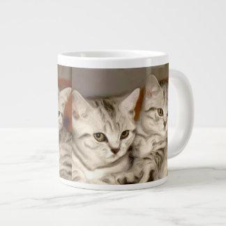 Gatos de Tabby Taza Grande