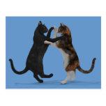Gatos del baile tarjeta postal