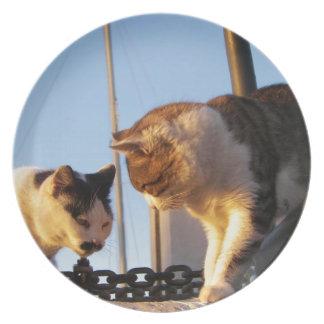 Gatos del Boatyard Platos