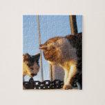 Gatos del Boatyard Puzzles