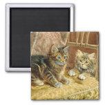 Gatos del gatito del vintage - arte del Victorian Imán De Nevera