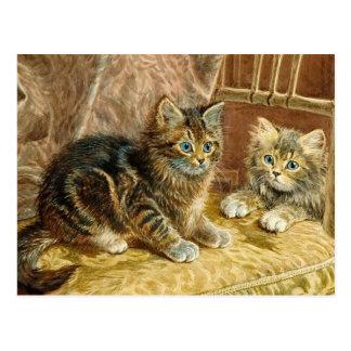 Gatos del gatito del vintage - postal del arte del