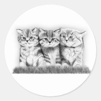 Gatos del gatito pegatina redonda