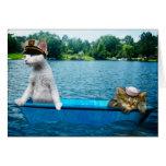 Gatos del marinero tarjeton