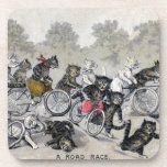 Gatos del montar a caballo de la bicicleta posavasos