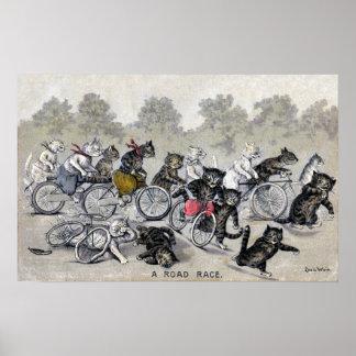 Gatos del montar a caballo de la bicicleta póster