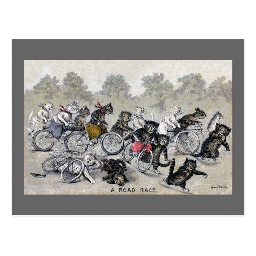 Gatos del montar a caballo de la bicicleta tarjeta postal