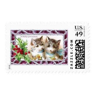 Gatos del navidad con acebo y margaritas