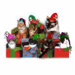 Gatos del navidad esculturas fotográficas