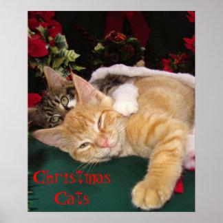 Gatos del navidad, gatitos lindos que abrazan, son posters