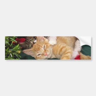 Gatos del navidad, gatitos lindos que abrazan, son pegatina para auto