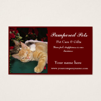 Gatos del navidad, gatitos lindos que abrazan, tarjeta de negocios