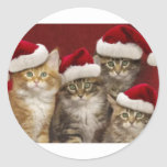Gatos del navidad pegatina redonda