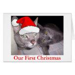 Gatos del navidad tarjetón