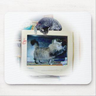gatos del ordenador alfombrillas de ratón