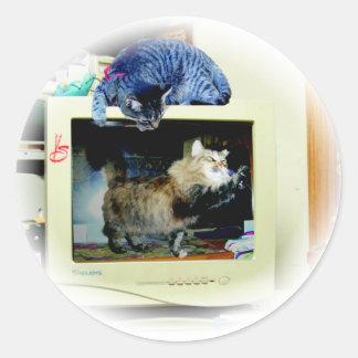 gatos del ordenador pegatina redonda