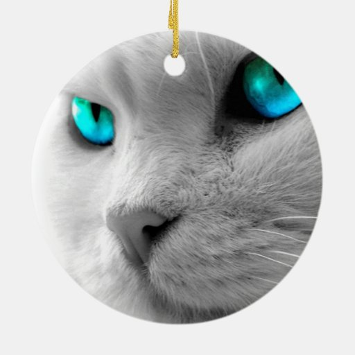 Gatos del ornamento del círculo adorno navideño redondo de cerámica