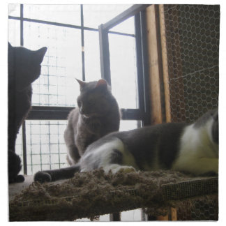 Gatos del refugio servilleta imprimida